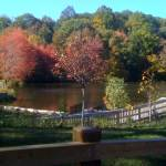 Hoppers / Birge Pond Nature Preserve Gallery